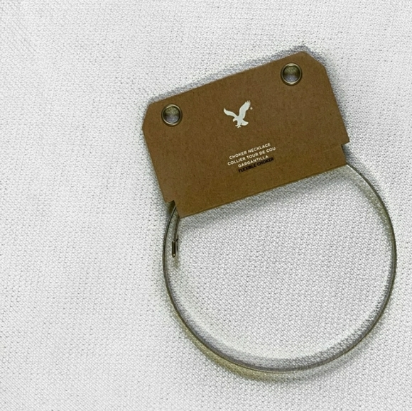 American Eagle Outfitters Jewelry - American Eagle Outfitters NWT Silver Choker